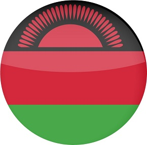 flag-of-malawi-shiny-round-button-vector-20420098